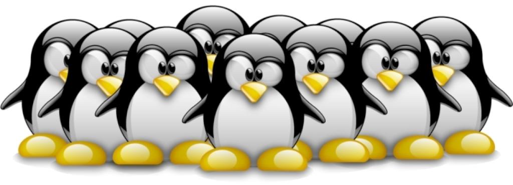 Comunidad GNU/Linux - Software Libre