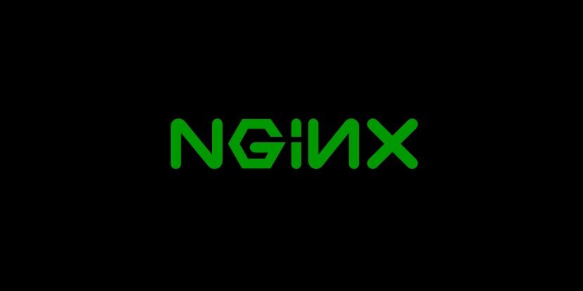 ¿Qué es un Servidor Web?: Logo Nginx