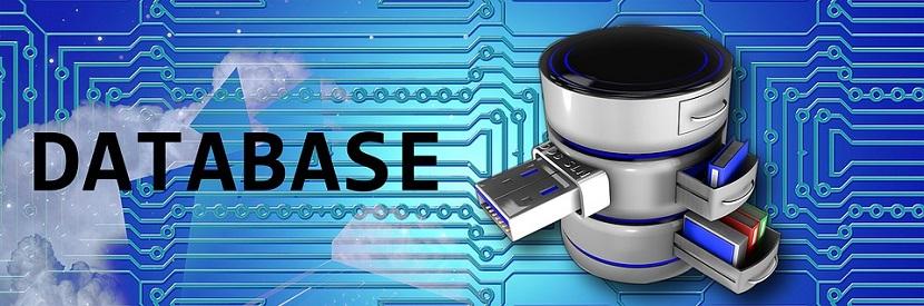 ¿Qué es un Servidor Web?: Bases de Datos