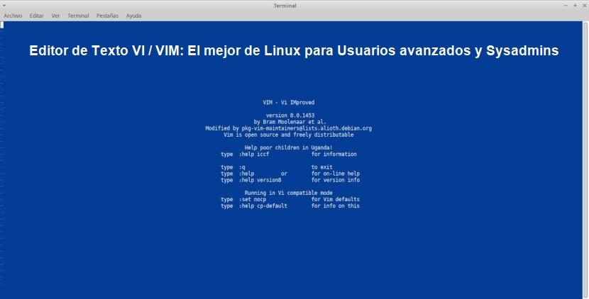 Editor de Texto VI / VIM: El mejor de Linux para Usuarios avanzados y Sysadmins