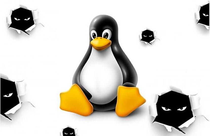 Kernel de Linux: Conclusión del proceso de compilación
