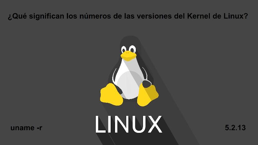 Kernel de Linux: Los números de versión del Kernel de Linux