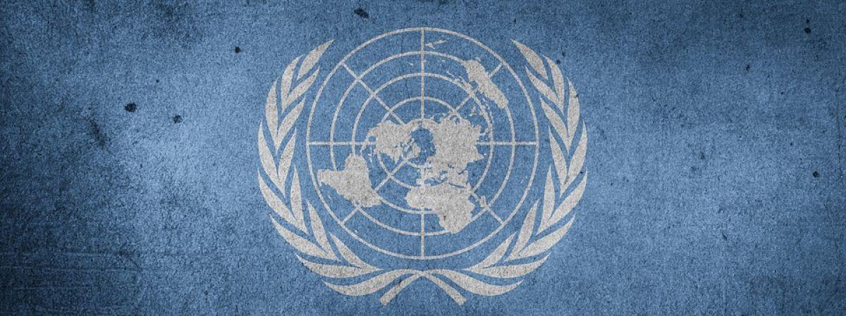Privacidad Informática: ONU