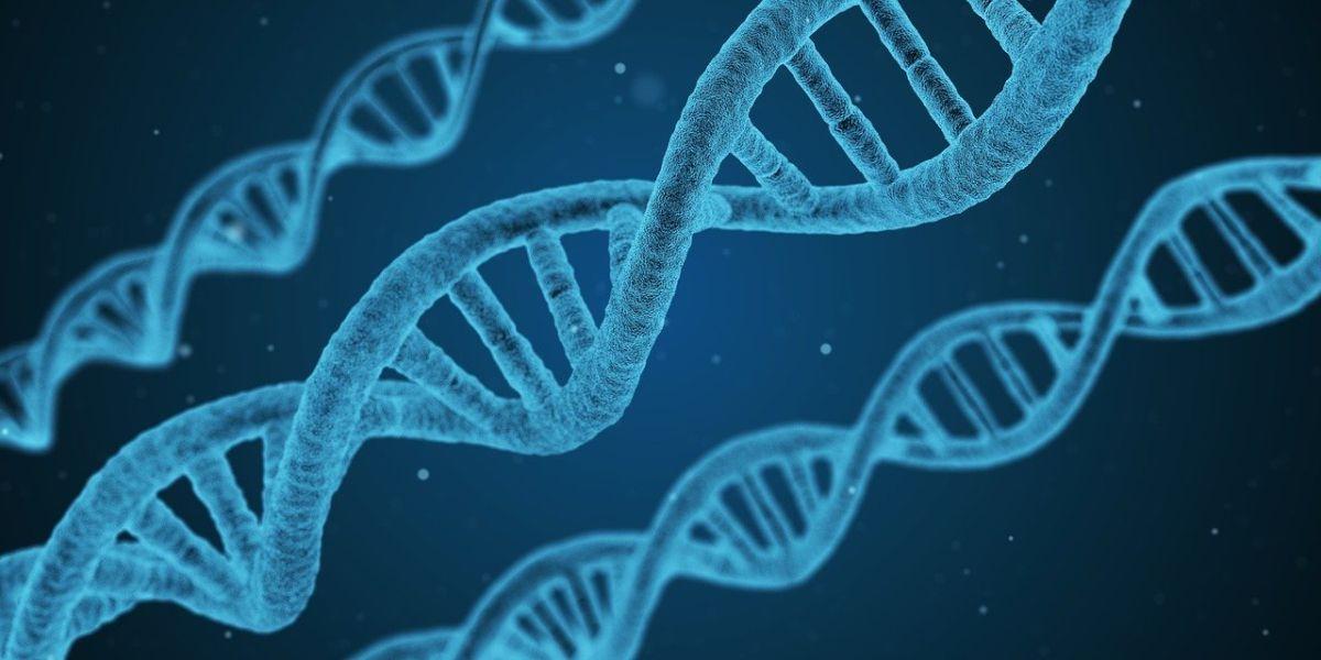 Resumen Tecnológico 2019: Biotecnología, Nanotecnología y Neurotecnología